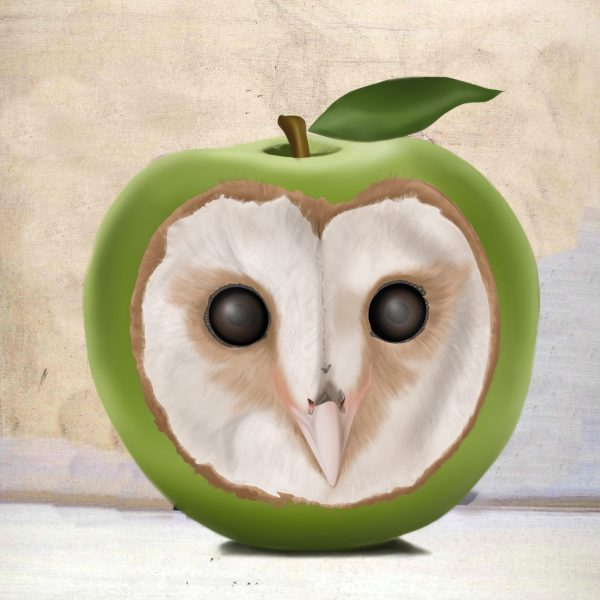 An owl apple