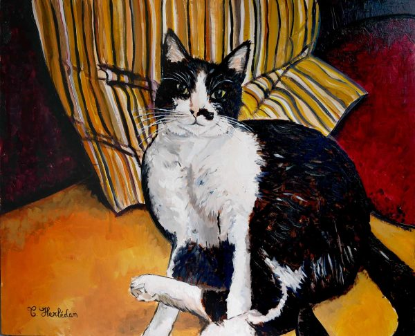 Chaussette, cat - Oil paiting